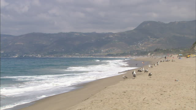 1080i HD OVERCAST HA XWS Pacific Oceans waves rolling onto curved beach with hills and Santa Monica Mountains in hazy BG seagulls standing along...
