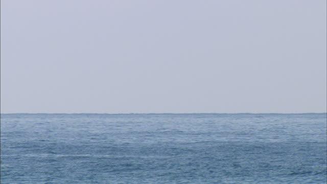 1080i hd ws pacific ocean sailboat with mainsail raised moving across frame - herumfahren stock-videos und b-roll-filmmaterial