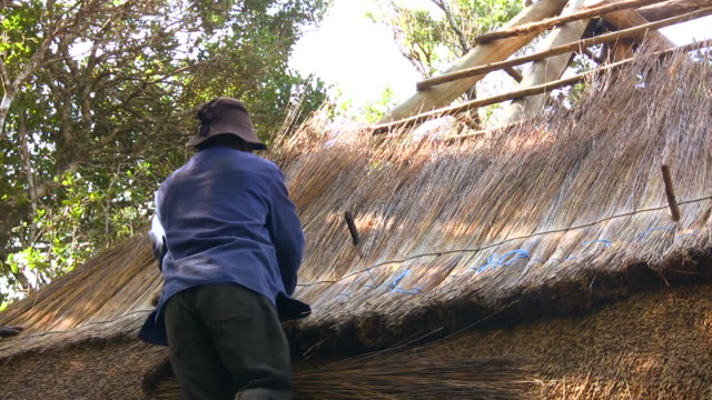 hd 1080i laying thatch roof in south africa 3 - construction frame stock videos & royalty-free footage