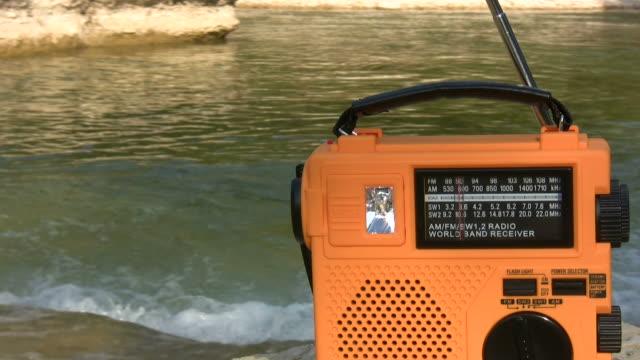 hd 1080 i pulsanti di 3 - antenna parte del corpo animale video stock e b–roll
