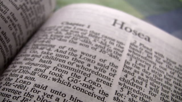 hd 1080i the book of hosea - holy book stock videos and b-roll footage