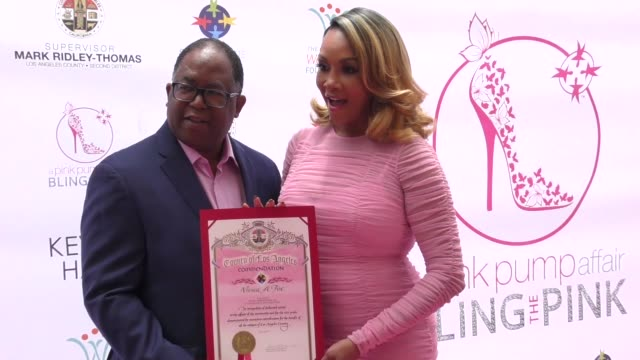 clean 10th annual pink pump affair charity gala fundraiser a decade celebrating w on may 20 2018 in beverly hills california - lisaraye mccoy stock videos & royalty-free footage