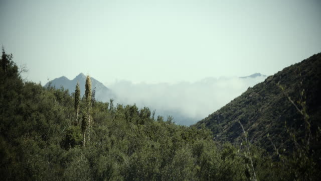 1.5x anamorphic time lapse of clouds flowing through a valley in bostonia. shot on fs700 using odyssey 7q recorder. 2.66:1 ratio - san diego stock videos & royalty-free footage