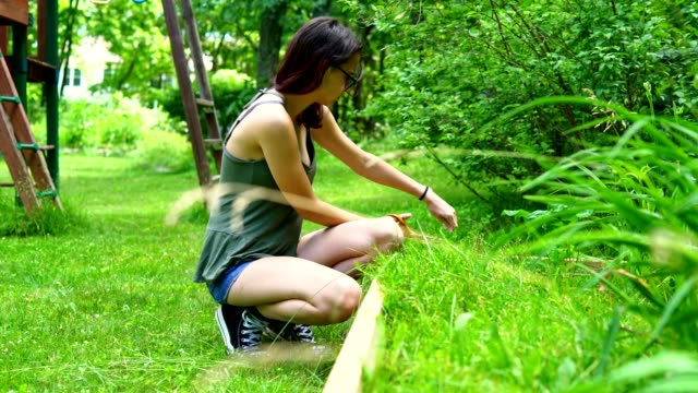 vidéos et rushes de fille adolescente de 15 ans de jardinage à l'arrière-cour, couper les mauvaises herbes dans le lit de la fleur - 14 15 years
