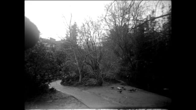 16mm footage - gerorgian london - ジョージア調点の映像素材/bロール