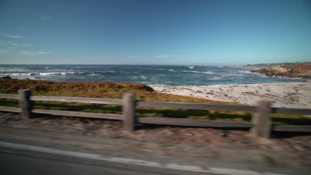 17-mile drive - carmel california stock videos & royalty-free footage