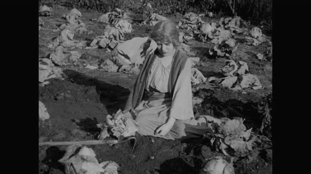 1910s peasant woman (blanche sweet) cries as she works in the cabbage crop - cabbage stock videos and b-roll footage