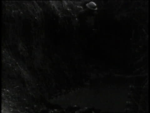 1910s ls uniformed soldiers wading through flooded trench / europe - trench stock videos & royalty-free footage