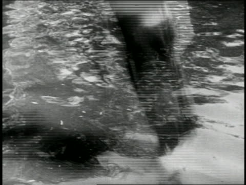 b/w 1910s woman (fatty arbuckle) falling into body of water / feature - slapstick stock videos & royalty-free footage