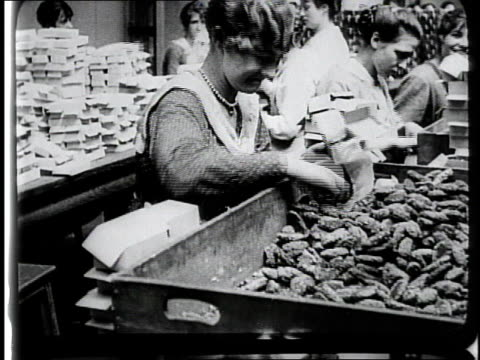 vidéos et rushes de 1910s women at tables packing boxes, looking at the camera and giggling / france - groupe organisé