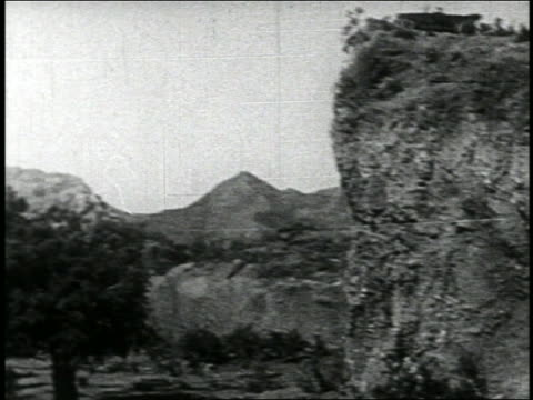 B/W 1920s car driving off of cliff + landing in tree / newsreel parody