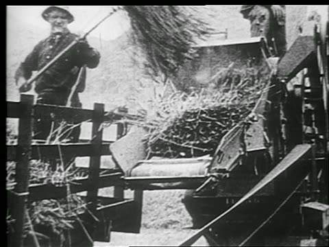 b/w 1920s farmer putting hay into machine with pitchfork - pitchfork stock videos & royalty-free footage