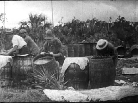 b/w 1920s federal agents destroying backwater still in florida swamp / prohibition / newsreel - backwater stock videos & royalty-free footage
