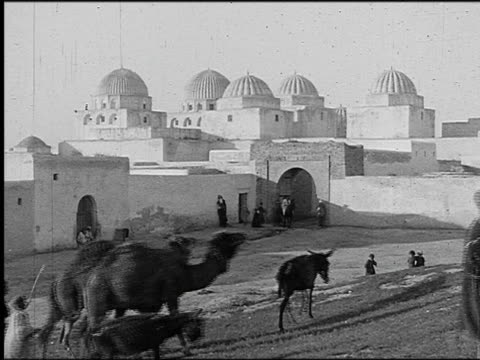 B/W 1920s men driving camels past Mosque of the Swords / Kairwan, Tunisia