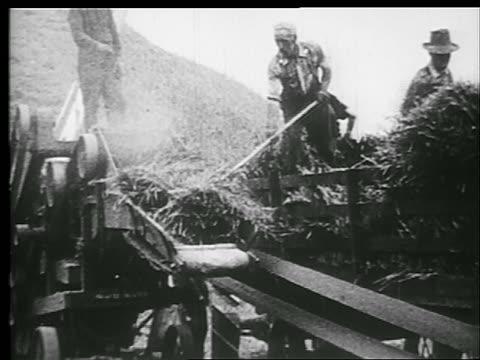 vídeos y material grabado en eventos de stock de b/w 1920s men putting hay into machine with pitchforks - bieldo equipo agrícola