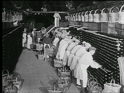 b/w 1920s/30s row of people working in champagne cave stacking bottles in wine rack / reims, france - 籠点の映像素材/bロール