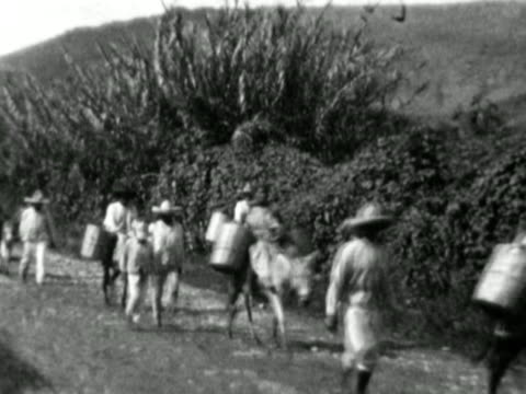 vidéos et rushes de 1930s b/w montage locals with donkeys riding down dirt road, with bags strapped to sides of donkeys / mexico - baudet