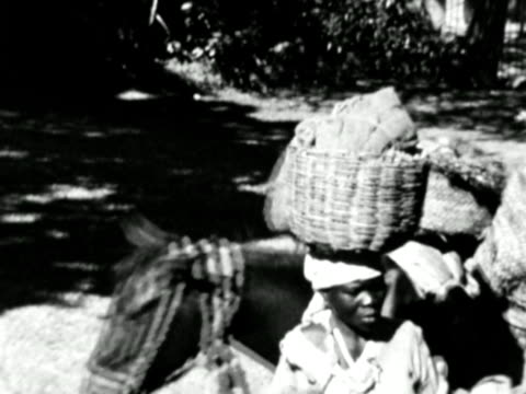 vidéos et rushes de 1930s b/w montage woman with donkeys carrying load / haiti - antilles occidentales