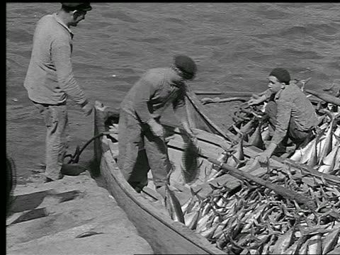 vidéos et rushes de b/w 1930s high angle pan fishermen unloading two small fishing boats filled with fish / brittany, france - pêcheur