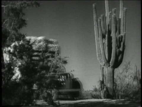 b/w 1930s/40s low angle ford tractor trailer carrying hay passes cactus on country road - hay truck stock videos & royalty-free footage