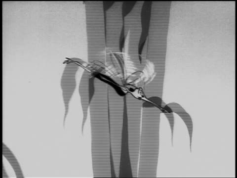 b/w 1940s animated pan profile mosquito flying through air past trees - mosquito stock videos & royalty-free footage