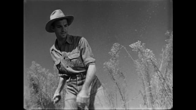 1940s farmer clears field with a machete - weeding stock videos & royalty-free footage