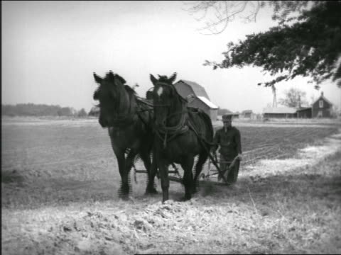 B/W 1940s farmer with horse-drawn plow moving past camera in field / tilt down to plow as it passes