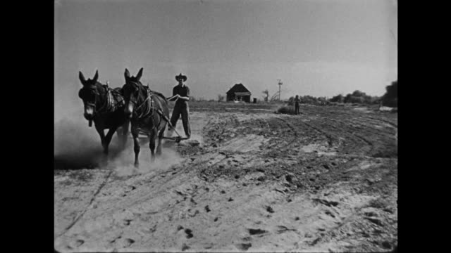 1940s hard working farmer man and woman plough, rake and burn as they farm - plough stock videos & royalty-free footage