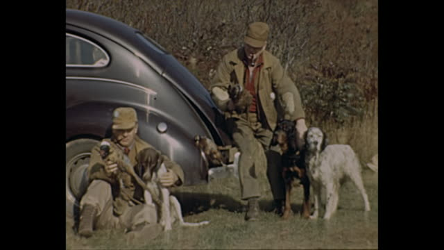 1940s home movie - hunters pose for camera with dogs and geese / boys look at dead deer hanging from tree - hunting sport stock videos & royalty-free footage
