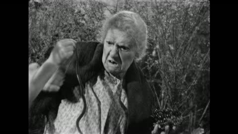 vidéos et rushes de 1940s little girl teases hillbilly grandmother with dead snake - péquenaud