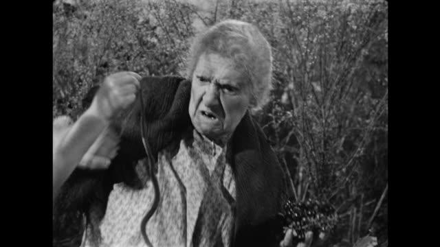 1940s little girl teases hillbilly grandmother with dead snake - ヒルビリー点の映像素材/bロール