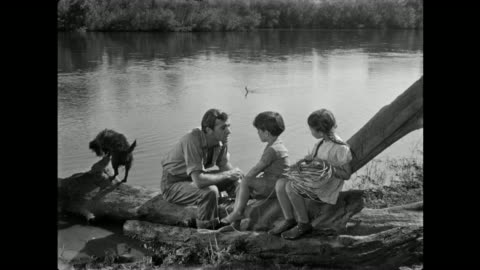1940s man discusses catching fabled catfish with his children on the riverbank - fairy tale stock videos & royalty-free footage