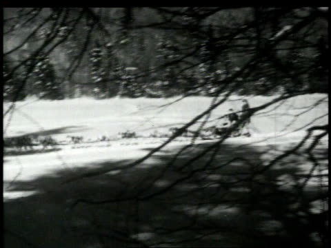1940s MONTAGE dogsledders crossing snow-covered ground / United States