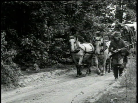 1940s ws wagons and prairie schooners of pioneer days using hemp, man walking beside wagon carrying rifle / united states - canapa video stock e b–roll