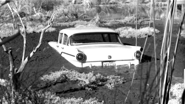 a 1950s ford sinks in a muddy swamp. - 1959 stock videos & royalty-free footage