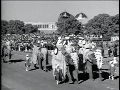 1950s montage elephants marching in a parade with people on their backs / india - medium group of animals stock videos & royalty-free footage