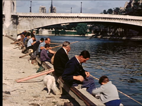 1950s row of men + boys sitting on edge of seine river fishing / pont de la tournelle in background / paris - river seine stock videos & royalty-free footage