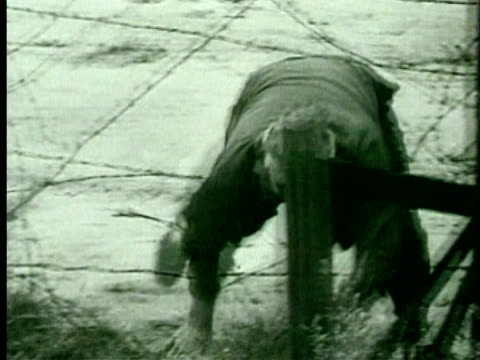 1960s b/w man running and climbing underneath barbed wire fence/ germany/ audio - escaping stock videos & royalty-free footage