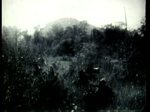 1960s b/w montage viet cong soldiers carrying supplies and marching through jungle / vietnam - ベトコン点の映像素材/bロール
