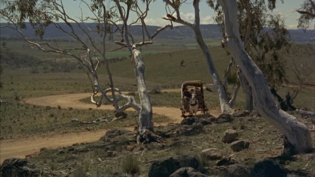 stockvideo's en b-roll-footage met 1960s ws covered wagon drawn by horse up country road - werkdier
