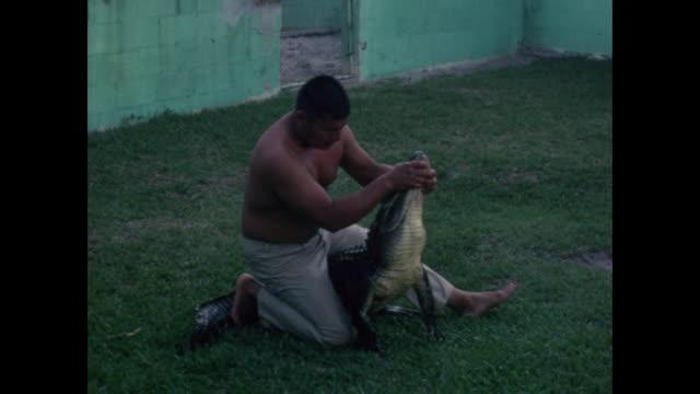 stockvideo's en b-roll-footage met 1960s home movie - man taunts and wrestles alligator - worstelen