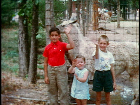 1960s HOME MOVIE PORTRAIT three children in front of llama cage waving enthusiastically at camera