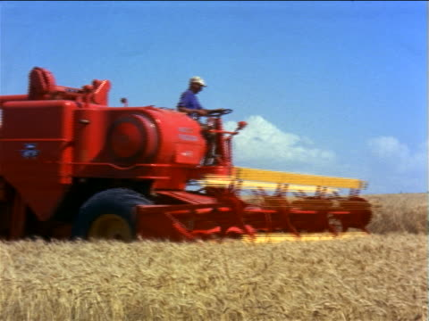 1960s man driving red combine past camera in wheat field / second combine passes in foreground / documentary - agricultural equipment stock videos & royalty-free footage