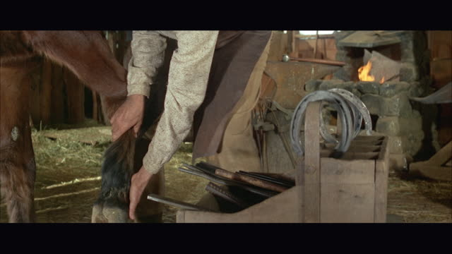 1960s ms tu man picking up and cleaning horse's hoof - horseshoe stock videos and b-roll footage