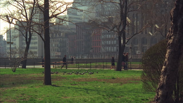 1960s ws people walking in park / new york city, usa - 1967 stock videos and b-roll footage