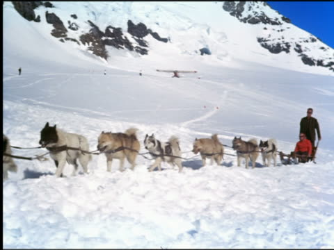 1960s PAN team of dogs pulling couple on sled through snow in mountains / Switzerland