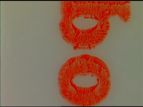 stockvideo's en b-roll-footage met 1970s 8mm film leader - 1970