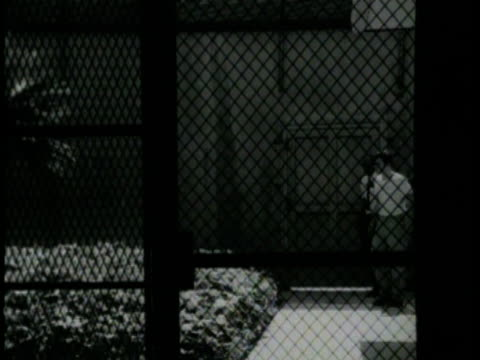 1970s b/w montage delinquent in solitary confinement cell in juvenile hall, los angeles, california, usa, audio - one teenage boy only stock videos and b-roll footage