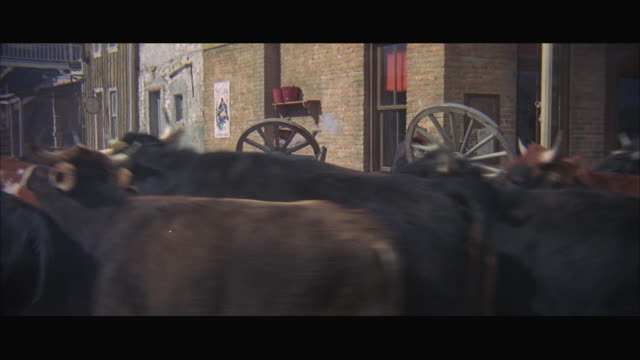 stockvideo's en b-roll-footage met 1970s ws cattle stampeding through town past wagon on fire - paardenkar