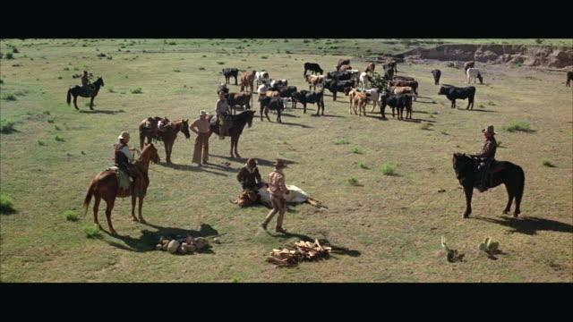 1970s WS HA Cowboys branding cattle